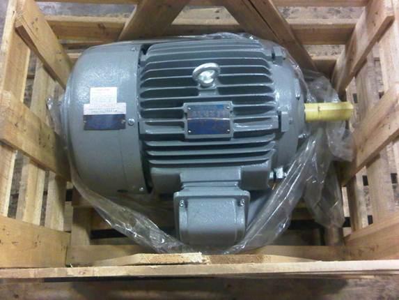 One 1 Inverter Duty Motor
